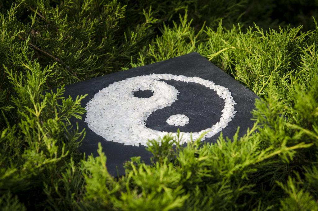 une ardoise est posée dans la végétation, un Taijitu y est dessiné avec du riz